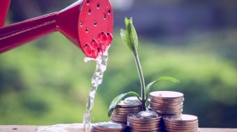 Den Einstieg leicht gemacht: Grundlagen der Geldanlage